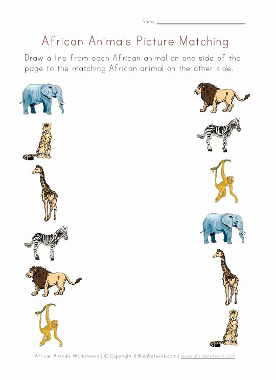 African Animals Worksheets for Preschoolers Free Picture Matching Worksheet African Animals theme