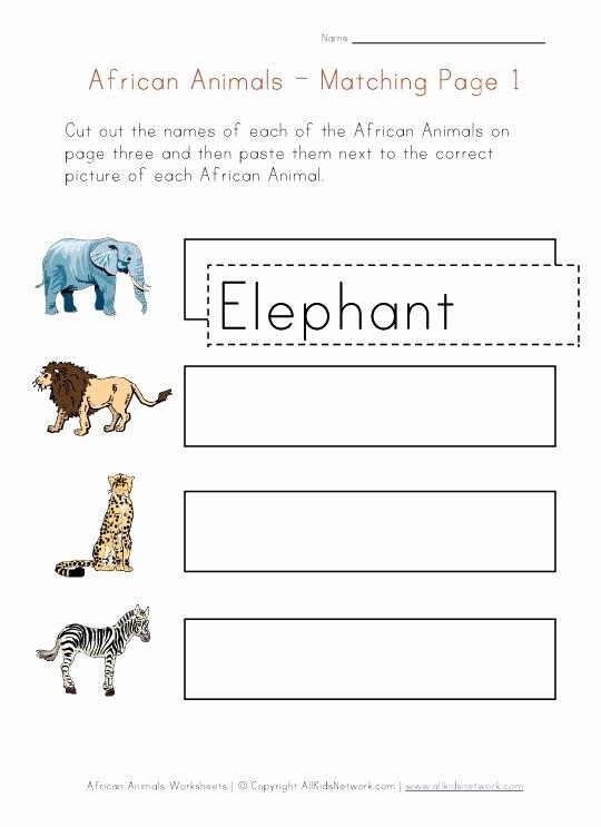 African Animals Worksheets for Preschoolers top Animals Of Africa Matching Worksheet