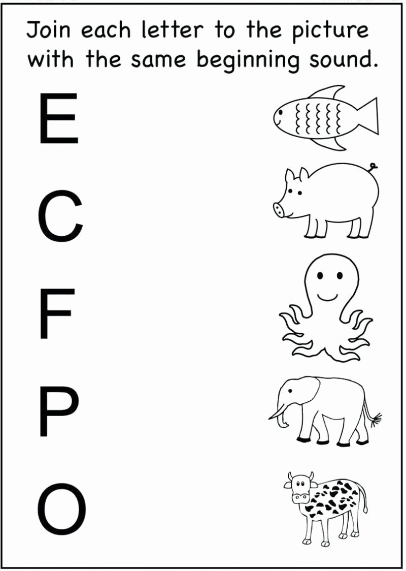 Alphabet Matching Worksheets for Preschoolers Fresh Math Worksheet Math Worksheet Excelent Freereschool