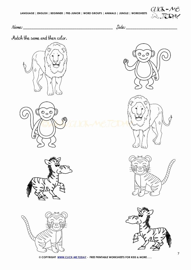 Animal Worksheets for Preschoolers Printable Jungle Animal Worksheet for Kindergarten In 2020