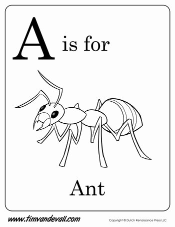 Ant Worksheets for Preschoolers Inspirational A is for Ant