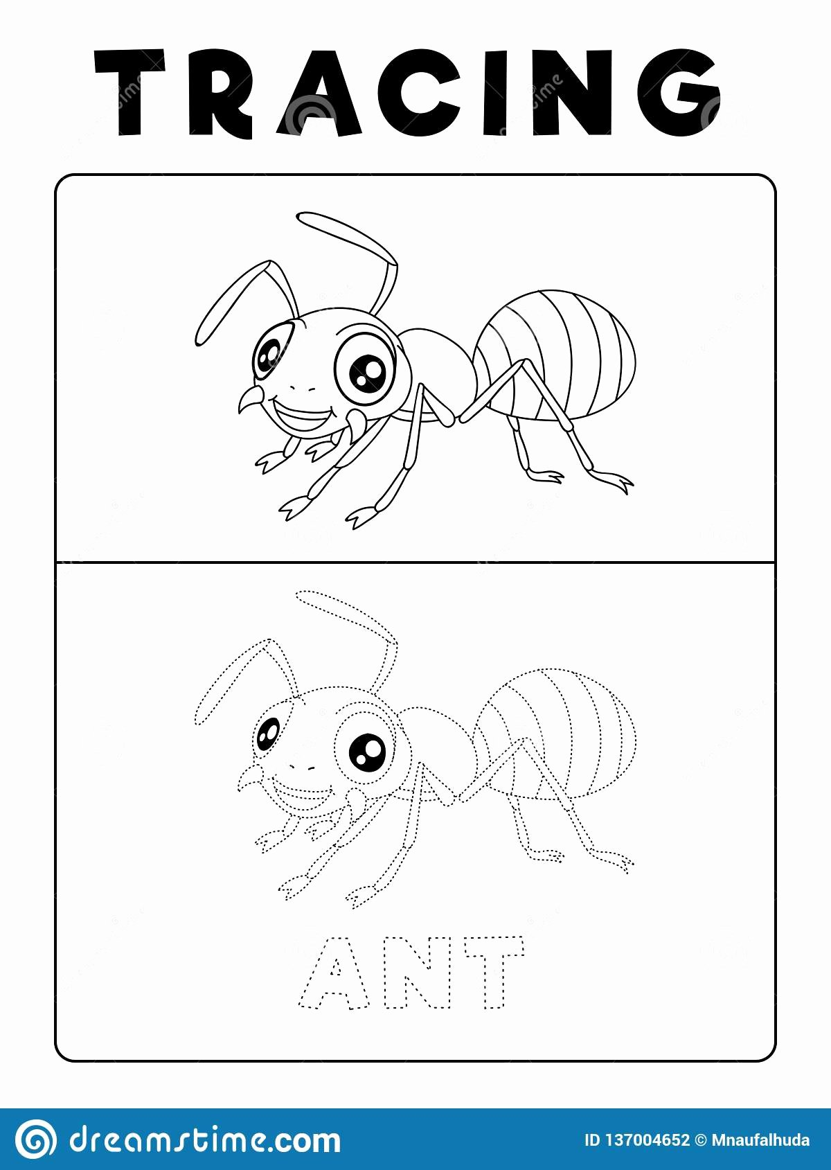 Ant Worksheets for Preschoolers Printable Funny Ant Insect Animal Tracing Book with Example Preschool