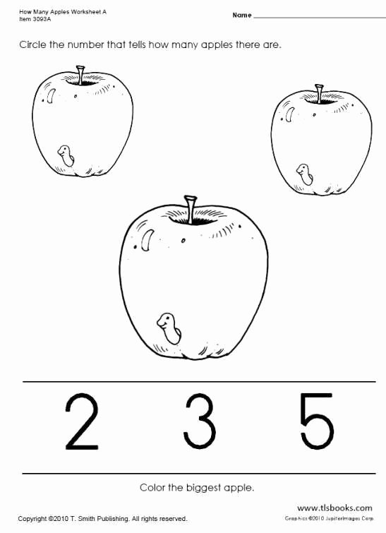 Apple Math Worksheets for Preschoolers New Many Apples Worksheets Apple Preschool