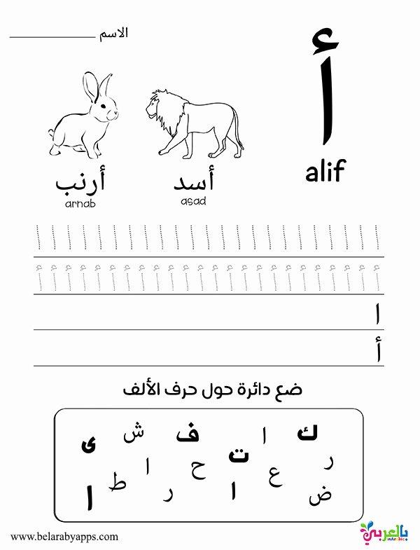 Arabic Worksheets for Preschoolers Kids Learn Arabic Alphabet Letters Free Printable Worksheets