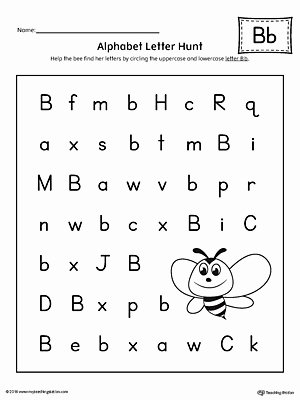 B Worksheets for Preschoolers Printable Alphabet Letter Hunt Letter B Worksheet