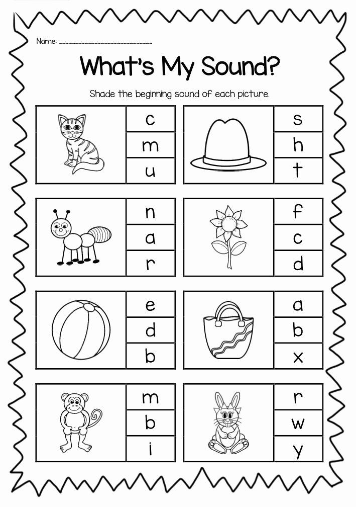 Beginning sounds Worksheets for Preschoolers Free Plete Beginning sound Worksheet Pack It is Perfect for