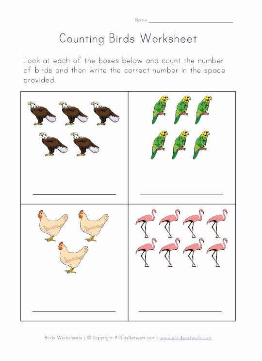 Bird Worksheets for Preschoolers Inspirational Birds themed Worksheets for Kids