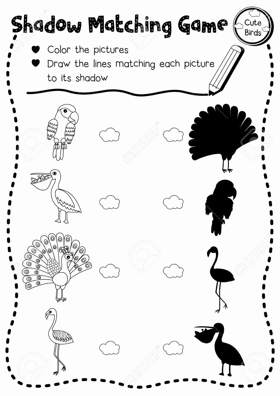 Bird Worksheets for Preschoolers Printable Shadow Matching Game Of Cute Bird Animals for Preschool Kids