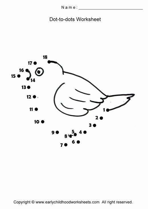 Bird Worksheets for Preschoolers top Pin On Skrmslin