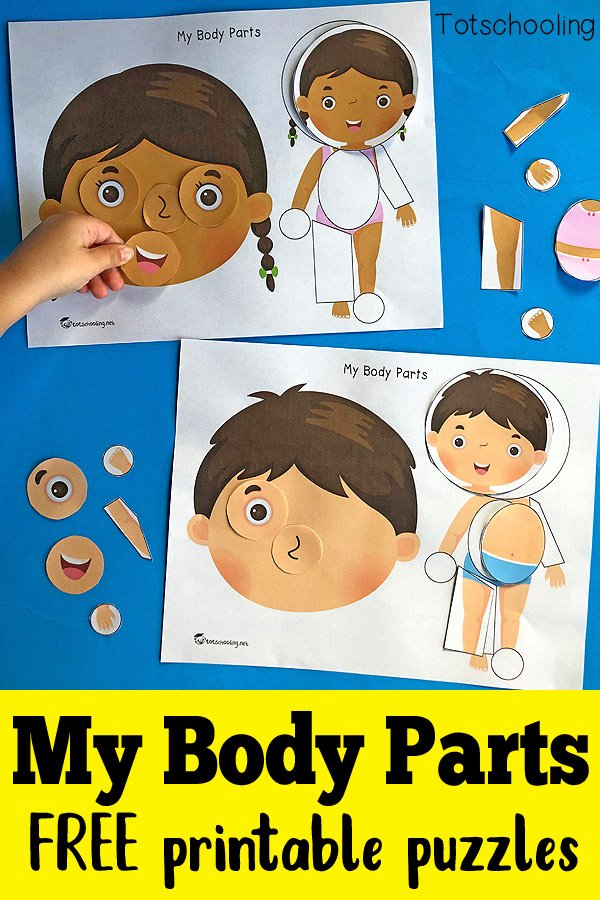 Body Parts Printable Worksheets for Preschoolers Fresh My Body Parts Printable Puzzles