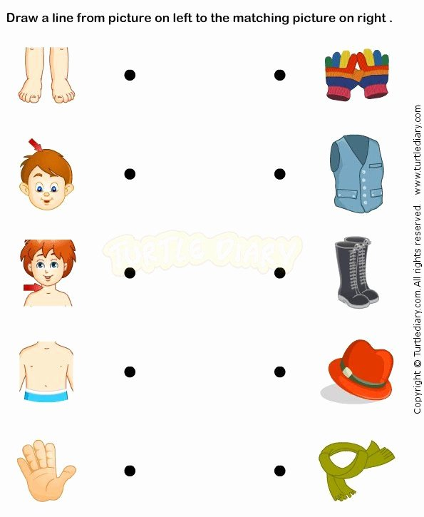 Body Parts Printable Worksheets for Preschoolers Lovely Pin Di Ideas for Units Of Inquiry Journeys
