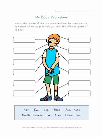 Body Parts Printable Worksheets for Preschoolers New Body Parts Worksheet for Kids