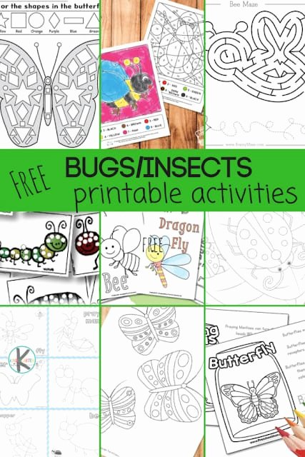 Bug Math Worksheets for Preschoolers Fresh 28 Free Insect Worksheets