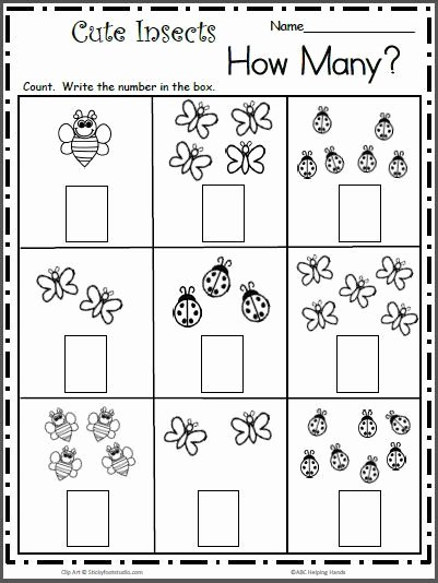 Bug Math Worksheets for Preschoolers Printable Count the Cute Insects Free Math Worksheet for K