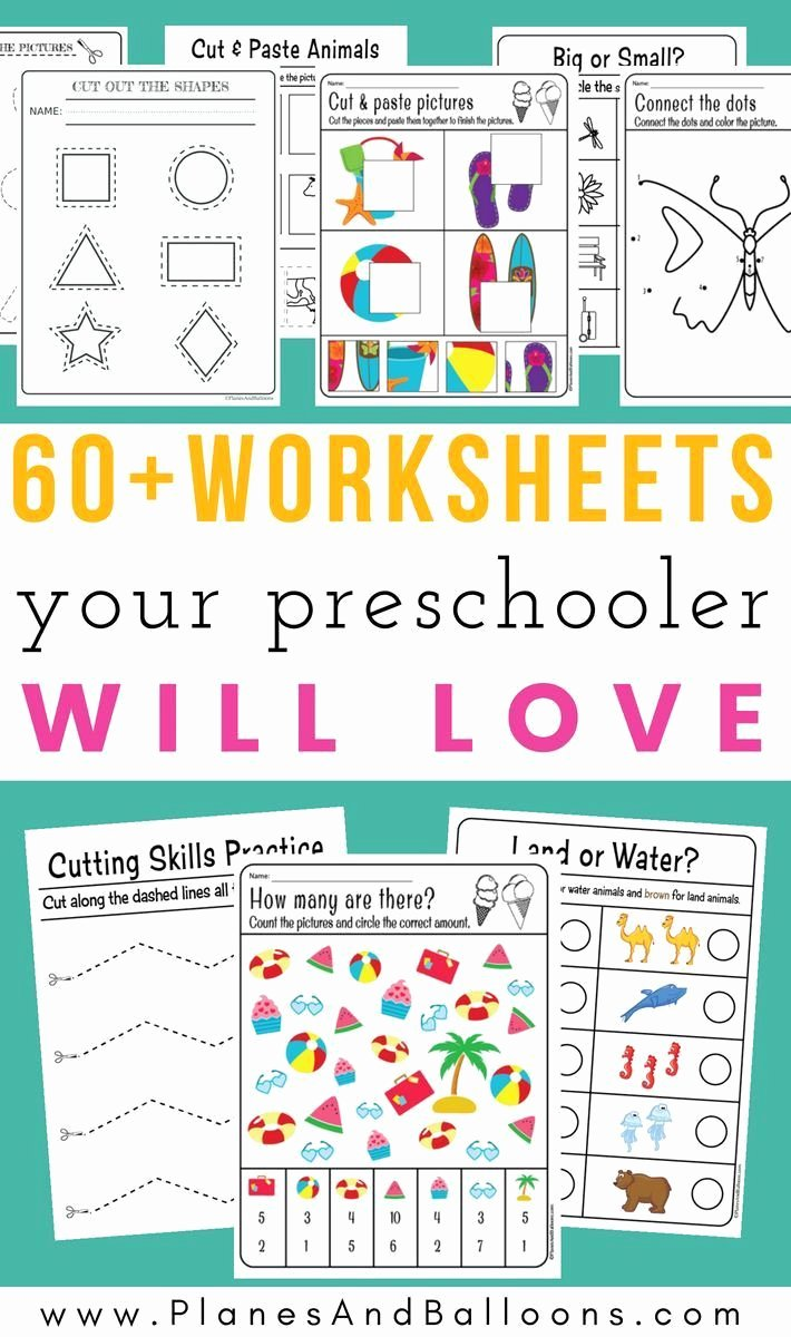 Cognitive Skills Worksheets for Preschoolers Lovely Pin On Worksheets
