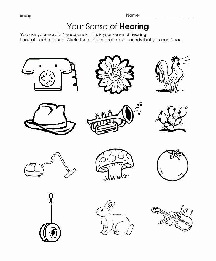 Cognitive Worksheets for Preschoolers Best Of Hear Worksheet