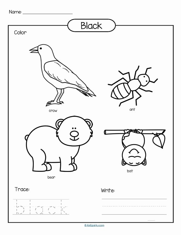 Color Black Worksheets for Preschoolers Inspirational Color Black Printable Color Trace and Write