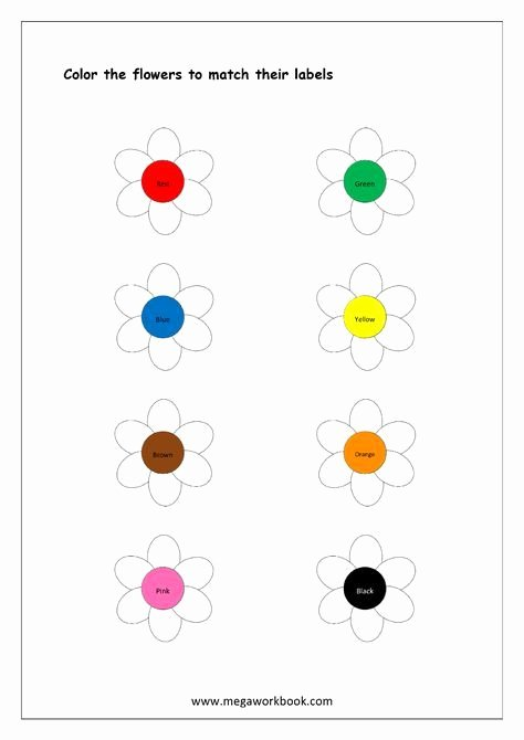 Color Recognition Worksheets for Preschoolers Fresh Color Recognition Worksheet Color the Objects Using