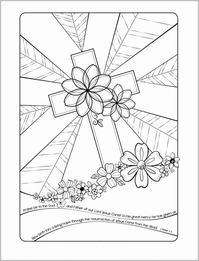 Dhivehi Worksheets for Preschoolers Kids Coloring Beautiful Math with Dhivehi Worksheets for