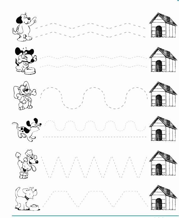 Dog Worksheets for Preschoolers Kids Dog Trace Worksheet