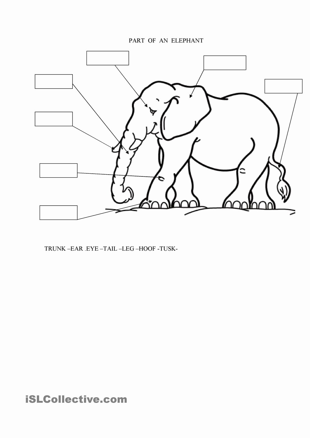 Elephant Worksheets for Preschoolers Printable Parts Of An Elephant