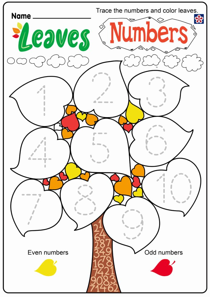Fall Worksheets for Preschoolers Free Best Of Free Fall Leaves Worksheets for Preschool and Kindergarten