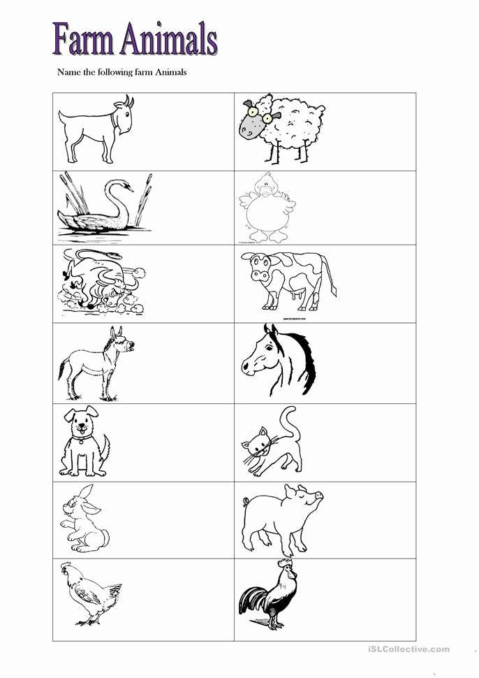 Farm Animals Math Worksheets for Preschoolers New Farm Animals