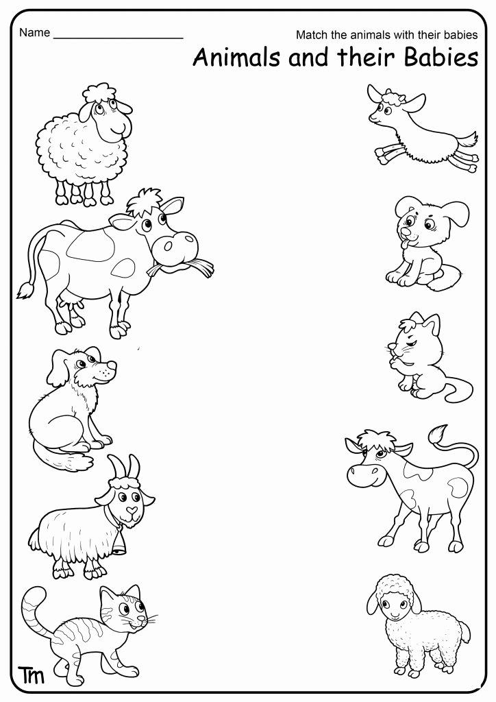 Farm Animals Worksheets for Preschoolers Inspirational Free Printable Farm Animal Worksheets for Preschoolers