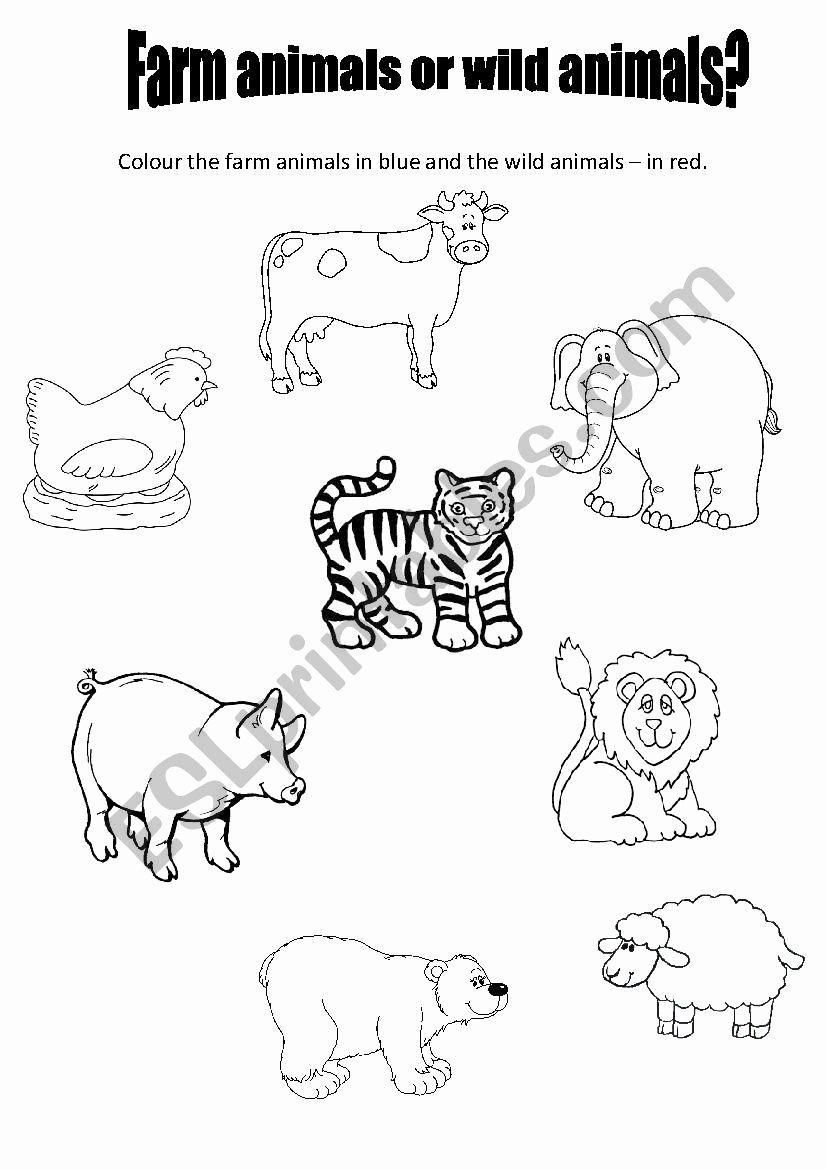 Farm Animals Worksheets for Preschoolers Lovely Farm Animals or Wild Animals for Preschool Esl Worksheet
