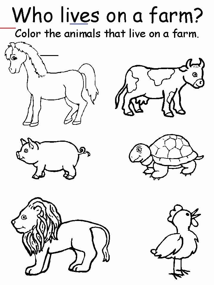 Farm Animals Worksheets for Preschoolers Printable Preschool Printable Farm Worksheets Animal Matching