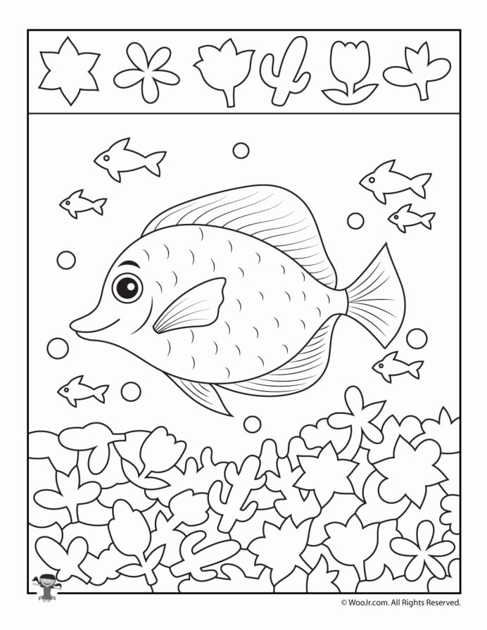 Fish Worksheets for Preschoolers Ideas School Fish Hidden Printable Childrens