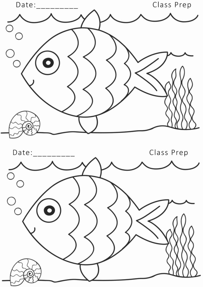 Fish Worksheets for Preschoolers Inspirational Urdu Worksheet for Pre Nursery Printable Worksheets and Fish