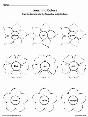 Flowers Worksheets for Preschoolers Fresh Learning Colors and Tracing Flowers Worksheet