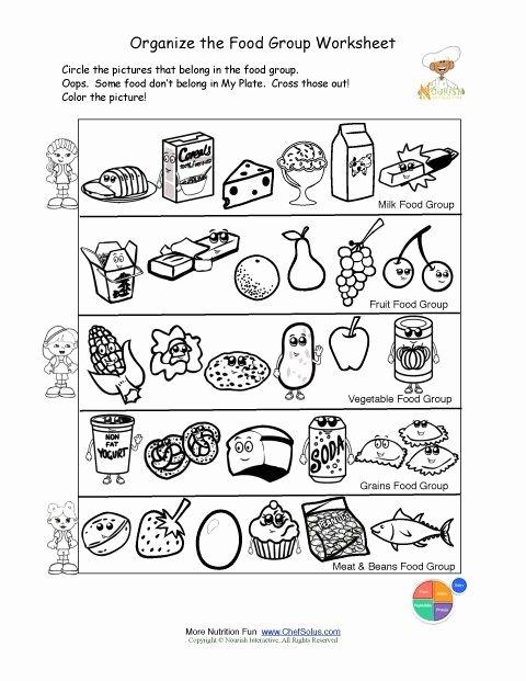 Food Worksheets for Preschoolers Ideas Free Food Groups Printable Nutrition Education Worksheet