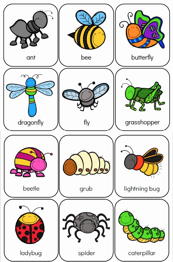 Free Bug Worksheets for Preschoolers Free Printable Preschool Bug Activities for Learning & Fun