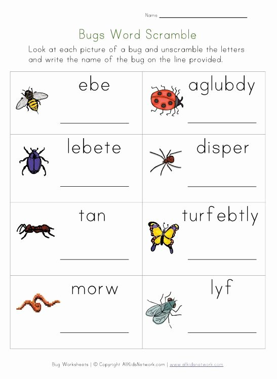 Free Bug Worksheets for Preschoolers New Bug Worksheets for Kids