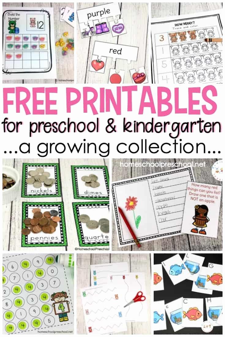 Free Homeschooling Worksheets for Preschoolers New Worksheet Free Preschool and Kindergarten Printables