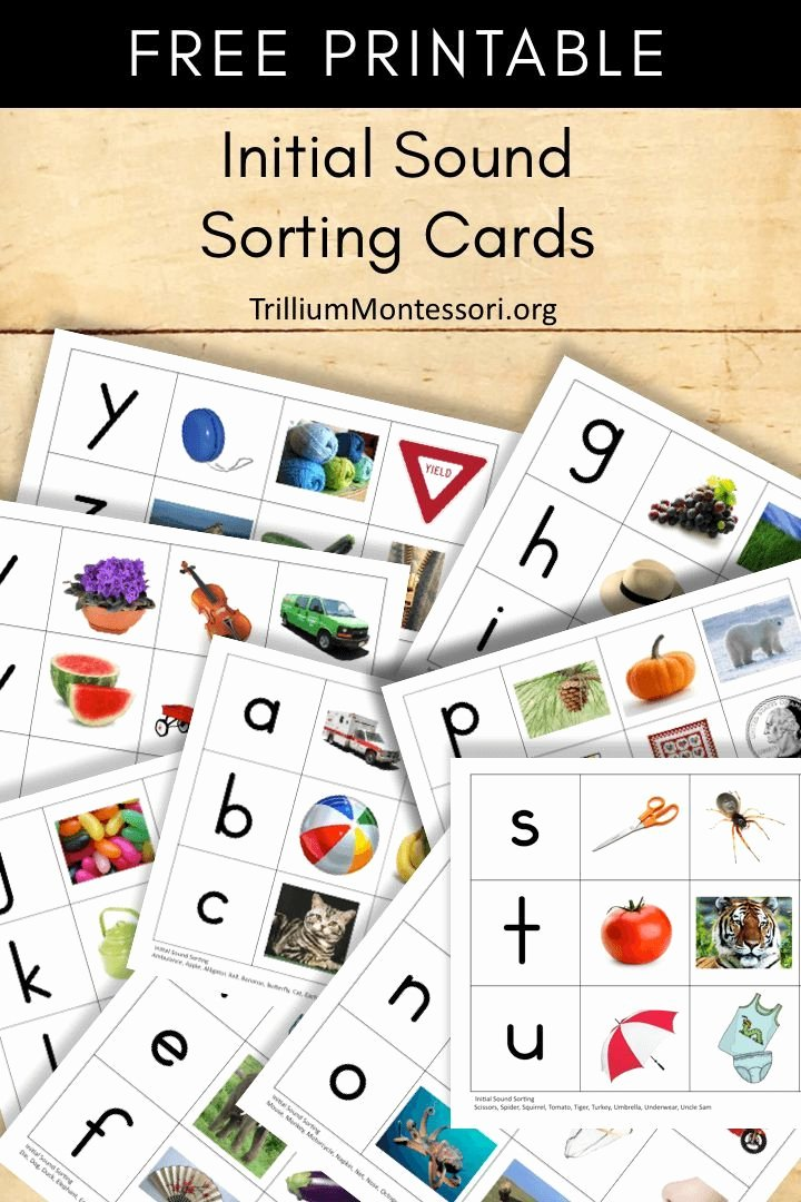 Free Montessori Worksheets for Preschoolers Free Free Montessori Printable Initial sound sorting Cards