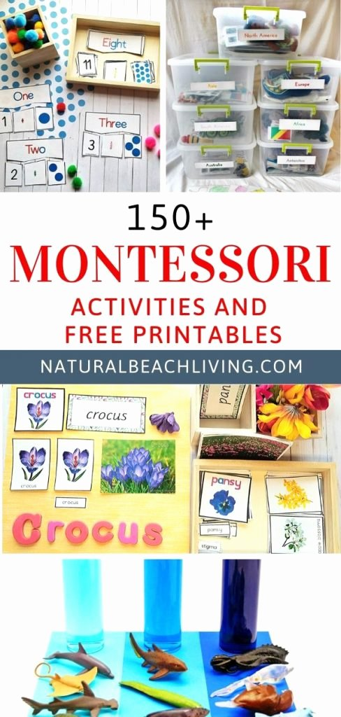 Free Montessori Worksheets for Preschoolers Printable 200 Amazing Montessori Activities and Free Printables