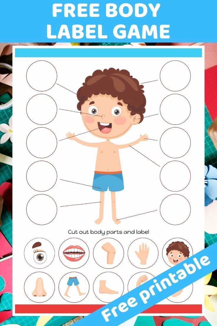 Free Printable Body Worksheets for Preschoolers Fresh Pin On Elementary