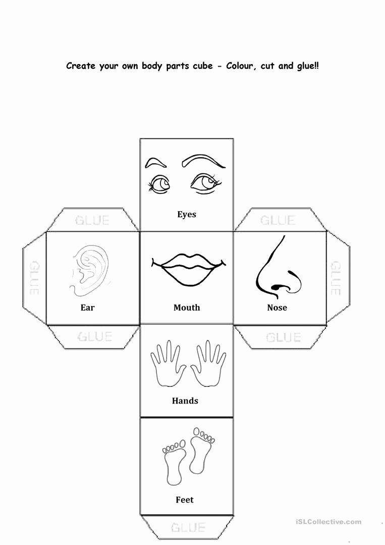 Free Printable Body Worksheets for Preschoolers New Pin On Body Parts