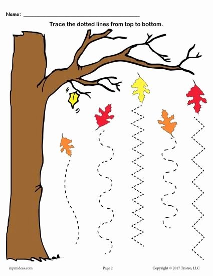 Free Printable Fall Worksheets for Preschoolers Lovely Printable Fall Line Tracing Worksheets