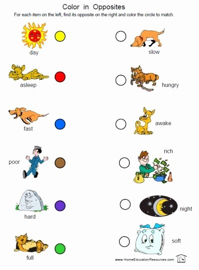 Free Printable Opposites Worksheets for Preschoolers Free Prek K Opposites Worksheets