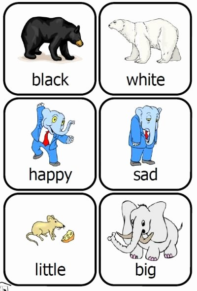 Free Printable Opposites Worksheets for Preschoolers New Content