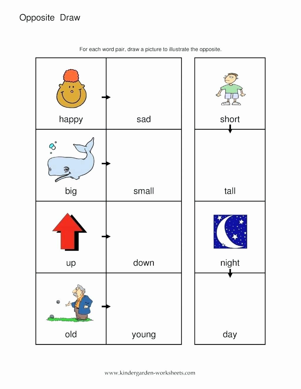 Free Printable Opposites Worksheets for Preschoolers New Worksheet Math Papers for Kindergarten Antonym Free