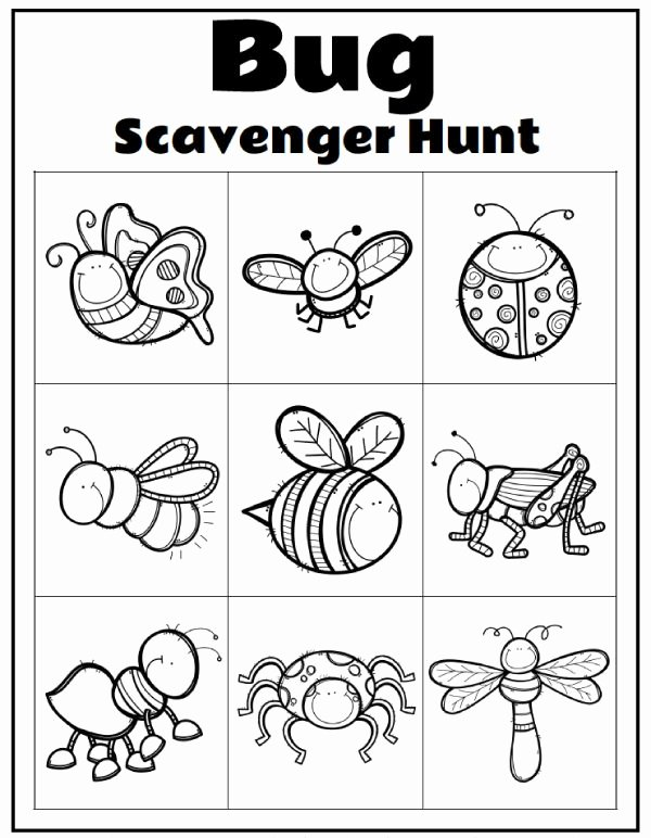 Fun Activity Worksheets for Preschoolers Kids Printable Preschool Bug Activities for Learning & Fun In