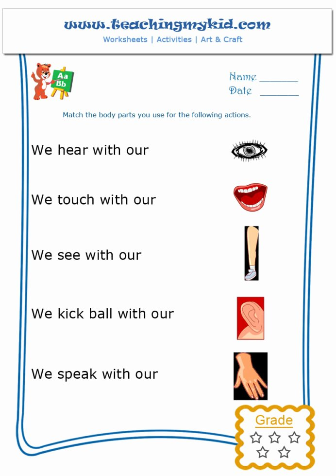 Gk Worksheets for Preschoolers Inspirational Kindergarten Learning Match the Body Parts Worksheet General