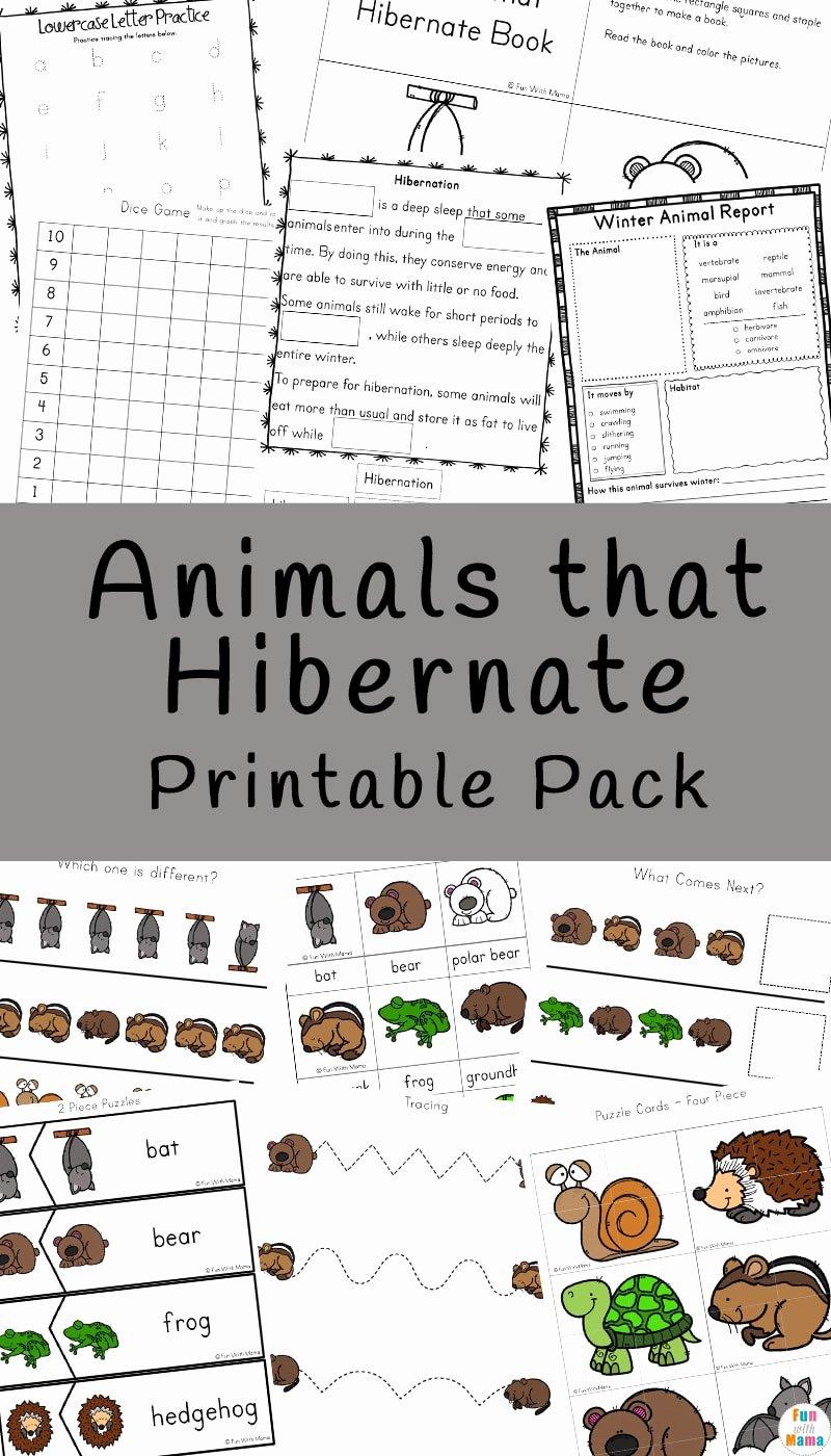 Hibernation Worksheets for Preschoolers Free Animals that Hibernate Printable Pack Fun with Mama