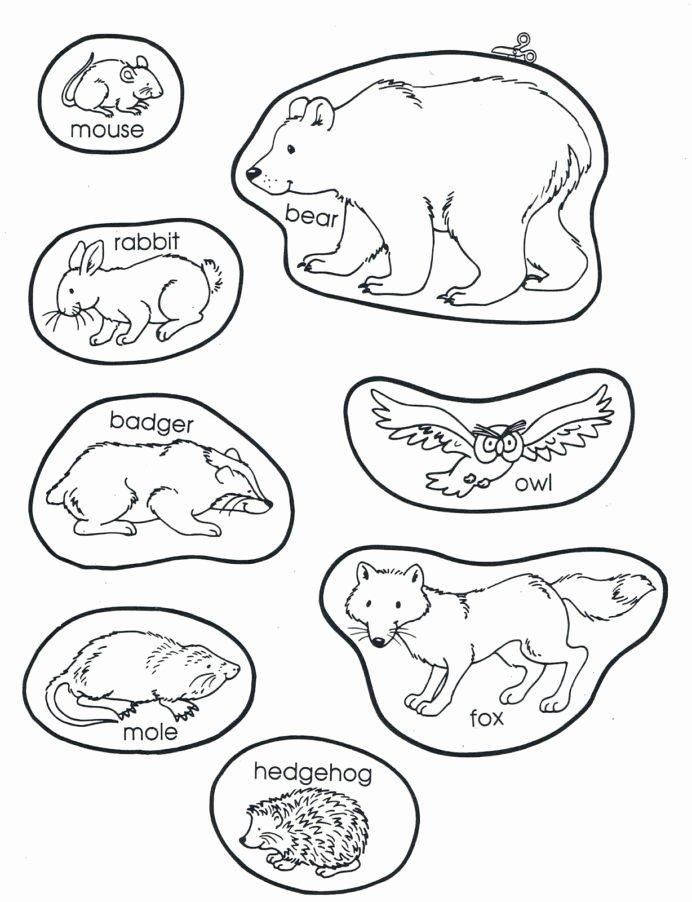 Hibernation Worksheets for Preschoolers Kids the Mitten Animals Preschool Books Winter Kindergarten