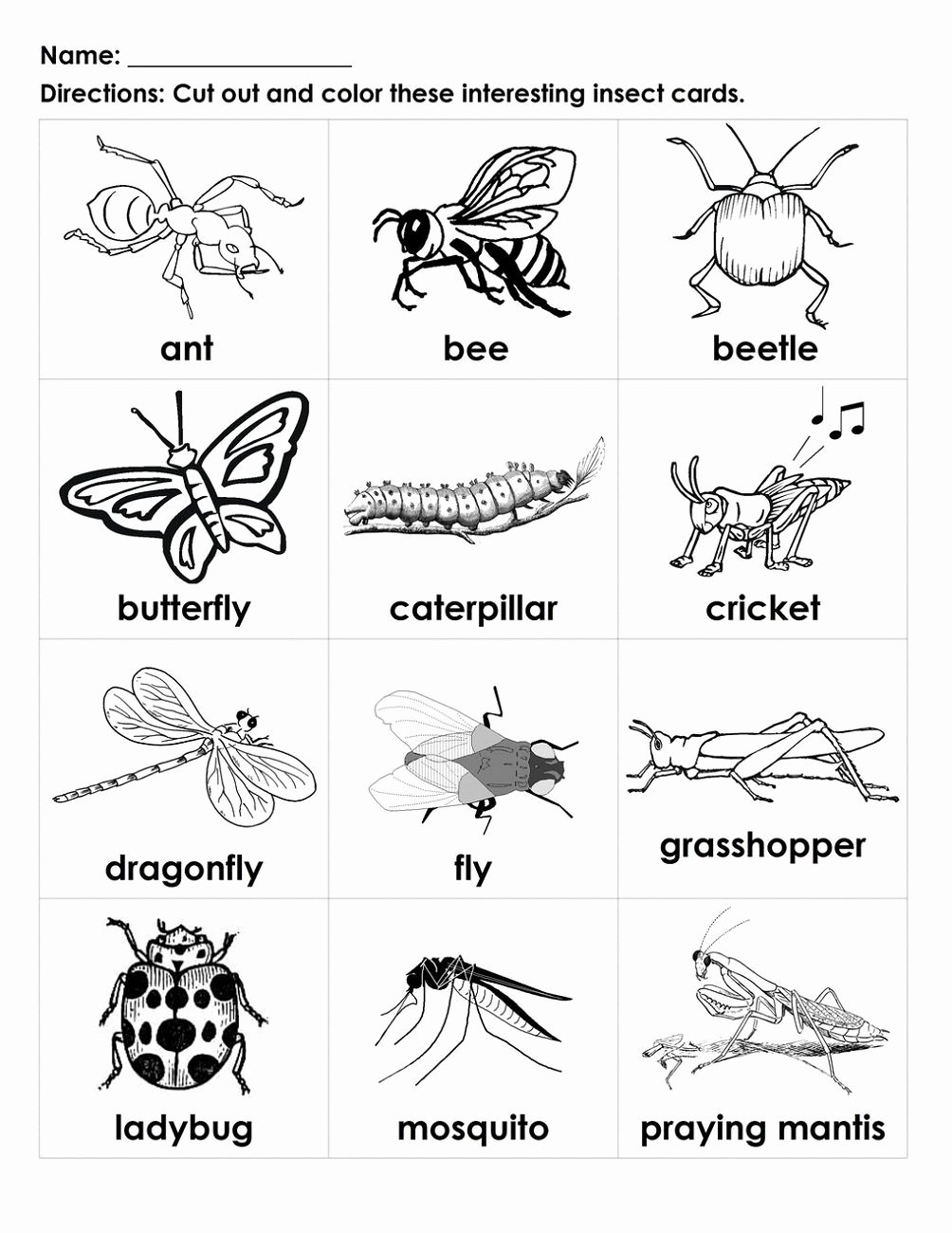 Insects Worksheets for Preschoolers Fresh Free Handouts for Learning